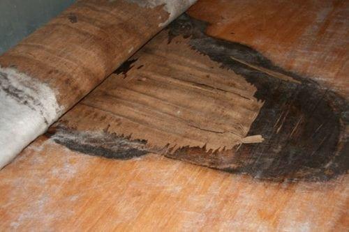 Rv Roof Repair And Inspection Las Motorhomes